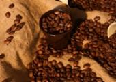 СЪБОТА /24.11/Масаж на гръб с кафе